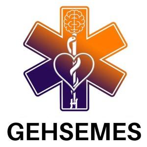 GEH SEMES