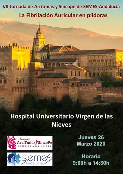 VII Jornada de Arritmias y Síncope de SEMES-Andalucía: La Fibrilación Auricular en píldoras